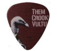 "Медиатор ""Them Crooked Vultures"""